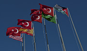 Unity Art - The Flags Of The Participating Nations by Stocktrek Images