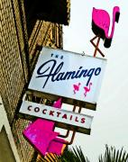 Lounges Posters - The Flamingo Poster by Charlette Miller