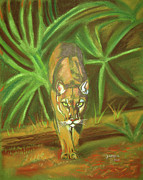 Florida Drawings Framed Prints - The Florida Panther  Framed Print by John Keaton
