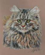 Maine Pastels Framed Prints - The Fluffy Feline Framed Print by Terry Kirkland Cook