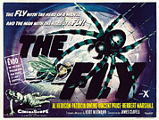 1950s Poster Art Photo Framed Prints - The Fly, David Hedison Aka Al Hedison Framed Print by Everett