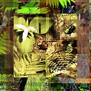 Forest Floor Digital Art Posters - The Forest And The Forest Floor Poster by Andrew Sliwinski