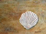 Shell Originals - The Fossil Shell by Jenny Armitage