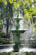 Moss Digital Art Prints - The Fountain Print by Mike McGlothlen