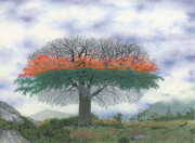 Colored Pencil Landscape Drawings Drawings - The four seasons tree by Wilfrid Barbier