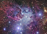 Monoceros Prints - The Fox Fur Nebula Print by R Jay GaBany
