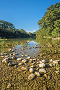 Texas Hill Country Prints - The Frio River in Texas Print by Andre Babiak