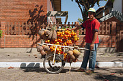 Young Man Photo Originals - The Fruit Seller I by Ordi Calder