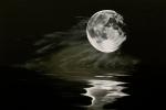 The Fullest Moon Print by Elisabeth Dubois