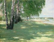 Tree Lined Paintings - The Garden of the Artist in Wannsee by Max Liebermann