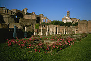 Vestal Framed Prints - The Garden Of The Vestal Virgins Framed Print by Taylor S. Kennedy