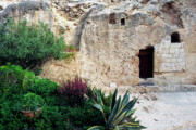 Holy Land Framed Prints - The Garden Tomb Framed Print by Thomas R Fletcher