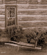 Cabin Window Photo Metal Prints - The Gardener Metal Print by Ed Smith