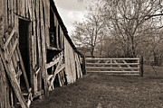 Wooden Barns Prints - The Gate Print by Lisa Moore