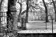 Low Country Framed Prints - The Gates of the Old Sheldon Church Framed Print by Scott Hansen