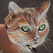 Orange Green Pastels Posters - The Georgie Cat II Poster by Amy-Elyse Neer