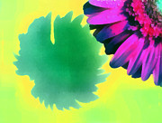 Christmas Holiday Scenery Art - The gerbera by Odon Czintos