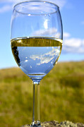 Pinot Grigio Prints - The Glass is Half Full Print by Thomas R Fletcher