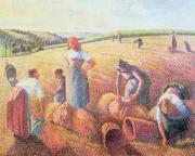 Moisson Framed Prints - The Gleaners Framed Print by Camille Pissarro