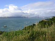 Sausalito Photos - The Golden Gate by Michael Howard