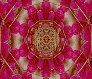 Meditative Mixed Media - The Golden Orchid Mandala by Pepita Selles