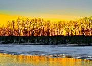 Winter Scenes Mixed Media Metal Prints - The golden pond Metal Print by Robert Pearson