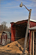 Oat Prints - The Grain Barn Print by Paul Ward