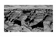 Grand Canyon Drawings - The Grand Canyon by John Bowman