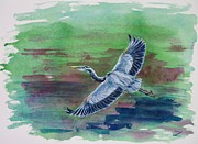 Great Blue Heron Paintings - The Great Blue Heron by Zaira Dzhaubaeva
