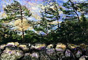 Jonathan E Raddatz - The Great Canadian Shield