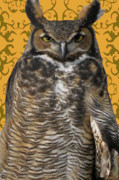 The View Mixed Media Prints - The Great Hored Owl Print by Debra     Vatalaro