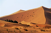 Erg Chebbi Framed Prints - The Great Merzouga Dune Framed Print by Sami Sarkis
