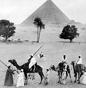 Camel Photos - The Great Pyramid of Giza - Egypt - c 1904 by International  Images