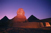 Pyramids Art Posters - The Great Sphinx Is Illuminated Poster by Richard Nowitz