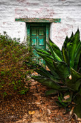 The Green Door Print by Christopher Holmes