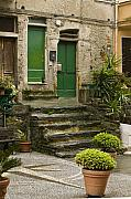 Cinque Terre Posters - The Green  Doors Poster by Lynn Andrews