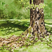 Tree. Sycamore Paintings - The green grass grew all around by Carla Dabney