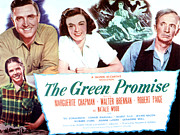 Robert Wood Framed Prints - The Green Promise, Natalie Wood, Robert Framed Print by Everett