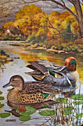 Susan Leggett Metal Prints - The Green-Winged Teal by Bart Jerner Metal Print by Susan Leggett