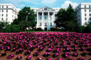 Upscale Framed Prints - The Greenbrier Framed Print by Thomas R Fletcher