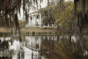 Swamps Prints - The Greenwoood Plantation Home Print by J. Baylor Roberts
