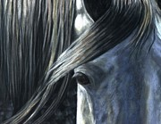Dapple Horse Pastels Prints - The Grey Print by Sheri Gordon