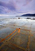 Pavement Metal Prints - The Grid Metal Print by Mike  Dawson