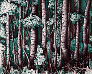 Dark Green Prints - The Grove At Sand Creek Print by Teddy Campagna