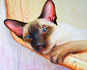 Denise Laurent - The Hammock - Siamese...