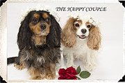 The Happy Couple Print by Daphne Sampson