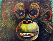 Monkey Framed Prints - The Happy Monkey Framed Print by Bob Crawford