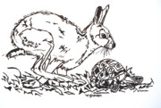 Indian Ink Paintings - The Hare And The Tortoise by Victoria Glover