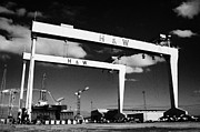 Cranes Framed Prints - The Harland and Wolff shipyard in Belfast Northern Ireland featuring the Samson and Goliath cranes Framed Print by Joe Fox