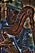 Harp Framed Prints - The Harp Player Framed Print by David Patterson
